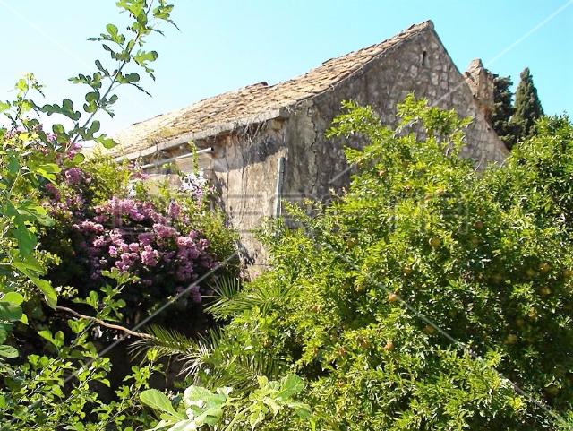 Nekretnine Hrvatska Kuće Dubrovnik Dubrovnik 792 m2 600000 euro