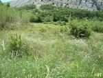 Nekretnine Hrvatska Građevinsko Zemljište Pag