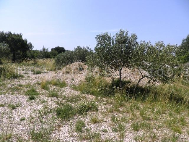 Nekretnine Hrvatska Poljoprivredno zemljište Pirovac