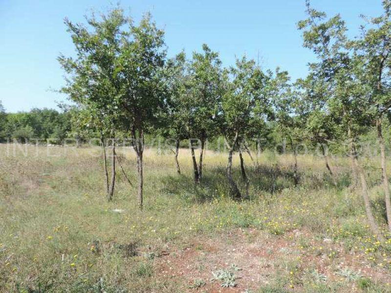 Nekretnine Hrvatska Poljoprivredno zemljište Vodice