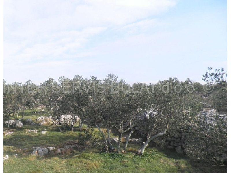 Nekretnine Hrvatska Poljoprivredno zemljište Jezera