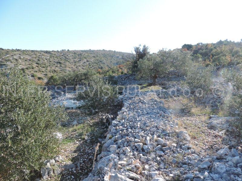 Nekretnine Hrvatska Poljoprivredno zemljište Primosten